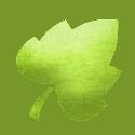 leaf-icon-tree-authority2