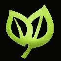 leaves2-icon-tree-authority