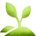 sprout-icon-tree-authority2